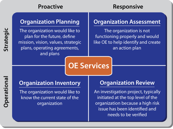 graphic showing OE services related to organizations