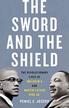 The Sword and the Shield book cover